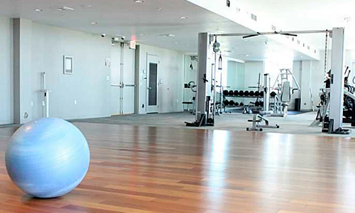 Lexi-Gym